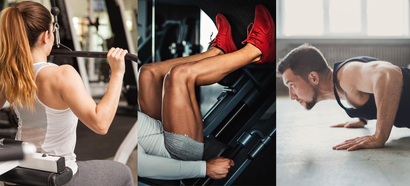6 Week Push Pull Leg Workout Plan Graphic Image