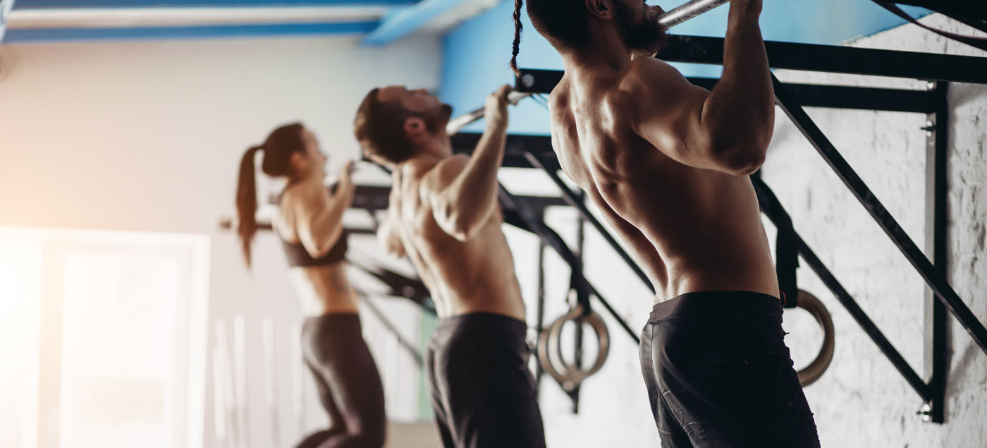 6 move back and bicep workout banner