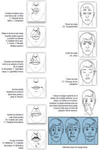 catalogo de los mejores masajeadores faciales para paralisis