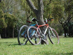 ya puedes comprar en internet las bicicletas estaticas roja